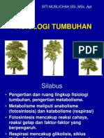 Metabolisme pada tumbuhan.pdf