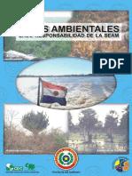 leyes Ambientales - Pagraguay