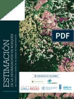 Estimación de La Degradación de Bosques de Colombia a Través de Un Análisis de Fragmentación