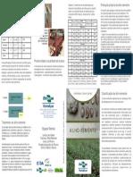 selecao-de-alho.pdf