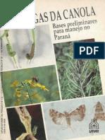 PRAGAS DA CANOLA.pdf