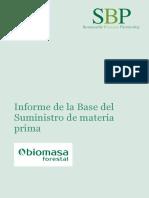 Informe de La Base Del Suministro 2017