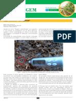 Boletim da Forragem - n4 - JAN-FEV 2016.pdf