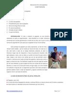 Manual de papalotes 2