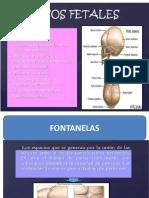 CABEZA-FETAL-PONENCIAS-OBSTETRICIA-1.pptx