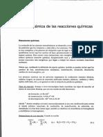 Termodinamica de las reacciones quimicas.pdf