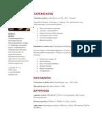 plantilla-4
