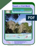 Tbait Tenab teik Uab Metô, Edisi 03, 9 Funboës 2010