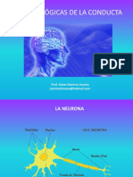 Bases Biologicas de La Condcuta Clase