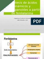 Biosíntesis de Ácidos Cinámicos y Fenilpropanoides