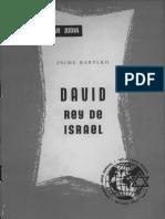 David Rey de Israel
