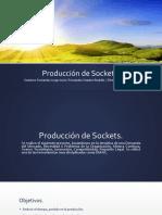 Proyecto para produccion de sockets