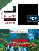 SISTEMA ESQUELÉTICO I .pdf