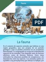La fauna de la Republica Dominicana