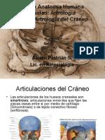 Clase Artrologia Craneo