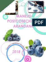 arandano