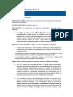 04 Control1 Auditoria Informatica V7