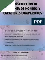 Reconstruccion de Filogenias en Hongos y Caracteres Compartidos.......