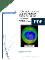 GUÍA_PRÁCTICA_05 terminado.doc