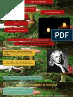 Diapositivas Del Fosforo Ccmm