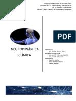 Neuro Dina Mia