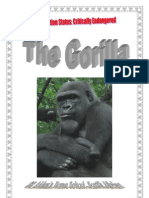 Africa Animals - *Critically Endangered*  African Gorilla, Donnette E Davis, St Aiden's Homeschool