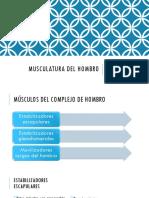 CLASE 02. MUSCULATURA DEL HOMBRO.pdf