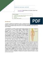 03) Sistema Nervioso Central, Meninges y Líquido Cerebroespinal