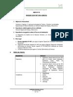proceso_cas_077.pdf