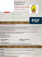 Unidad Minera Toquepala (ppt)