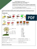 guía de 3° de preescolar correspondiente a octubre 2018