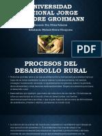 Procesos del desarrollo rural-Michael Rivera Vilcapoma.pptx