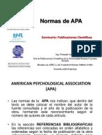 22_Normas_de_APA.pptx