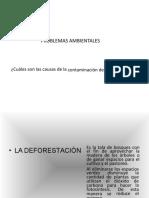 Problemas Ambientales 3
