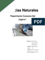 Experimento de Ciencias Naturales