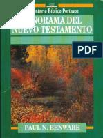 Benware-PanoramaNT.pdf