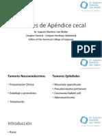 1.9 Tumores de Apéndice Cecal