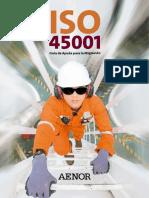 Aenor Guia Ayuda Migracion ISO45001