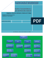 Caracteristica Derecho Laboral Ok. PDF (1)