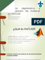 Métodos Algebraicos y Manipulación de Matrices en MATLAB
