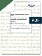 INformatica Mitzi.pdf