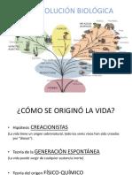 Preguntas - PEP 2 PSC.celul