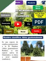 Presentacion Maderas - Copia