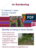 Vegetable Gardening Basics 3-31-2015