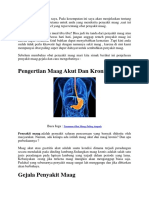 Cara Menghilangkan Penyakit Maag Akut Dan Kronis Untuk Selamanya Tanpa Efek Samping