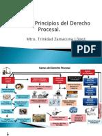 DERECHO PROCESAL FUENTES Y PRINCIPIOS.pptx