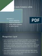 Struktur Dan Fungsi Lipid Fix