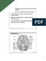 Cranial nerves .pdf