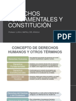 DERECHOS-FUNDAMENTALES-Y-CONSTITUCIÓN.pdf
