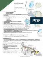 Anatomie Hochcervikal Innervation 12